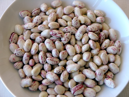 Cranberry Beans Just Shelled