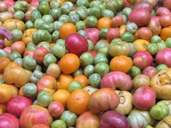Heirloom Tomatoes at The Farm Fresh to You store, which provides Bay Area customers with Capay Organic farms quality seasonal organic produce.