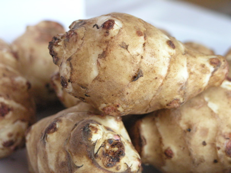 Jerusalem Artichokes