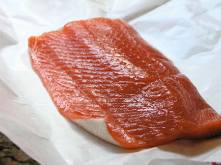 Wild Coho Salmon